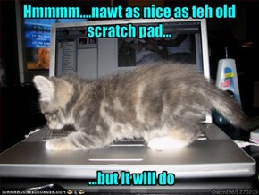 Hmmmm....nawt as nice as teh old scratch pad...