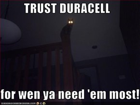 TRUST DURACELL  for wen ya need 'em most!