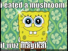 i eated a mushroom  it wuz magikal