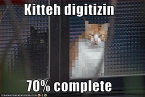 Kitteh digitizin  70% complete