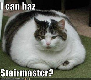 I can haz  Stairmaster?