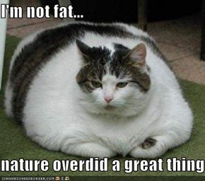 I'm not fat...  nature overdid a great thing