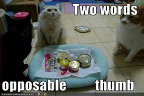 Two words  opposable          thumb
