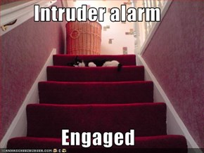 Intruder alarm  Engaged