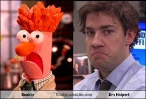 Beaker Totally Looks Like Jim Halpert