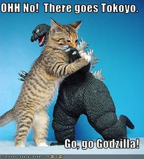 OHH No!  There goes Tokoyo.                              Go, go Godzilla!
