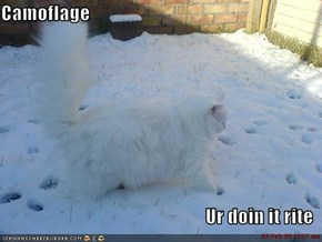Camoflage  Ur doin it rite