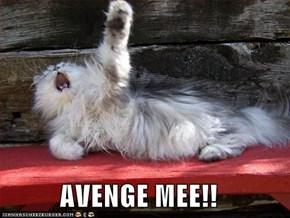 AVENGE MEE!!