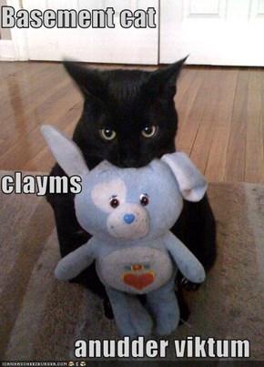 Basement cat clayms anudder viktum