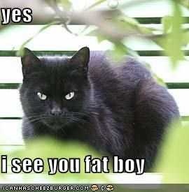 yes  i see you fat boy