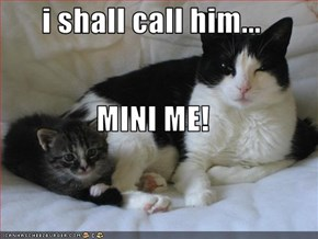 i shall call him... MINI ME!