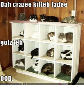 Dah crazee kitteh ladee gotz teh OCD.