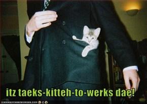 itz taeks-kitteh-to-werks dae!