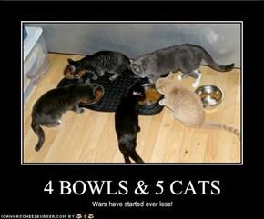 4 BOWLS & 5 CATS