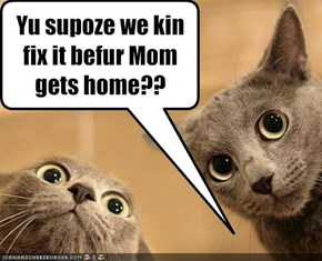 Yu supoze we kin fix it befur Mom gets home??