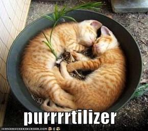 purrrrtilizer