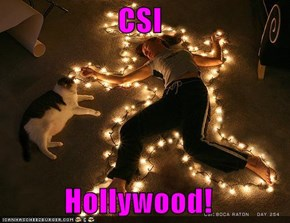 CSI  Hollywood!