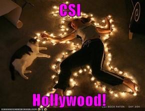 CSI  Hollywood!