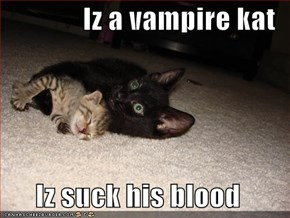 Iz a vampire kat  Iz suck his blood