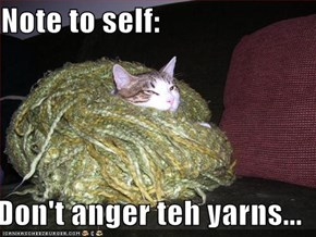 Note to self:  Don't anger teh yarns...