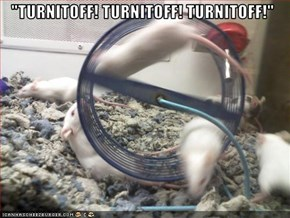 """TURNITOFF! TURNITOFF! TURNITOFF!"""