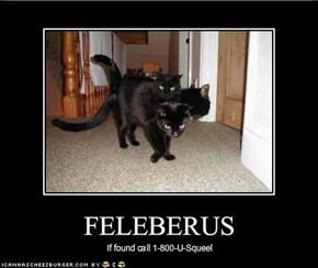 FELEBERUS