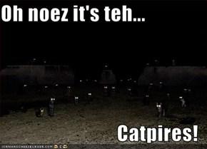 Oh noez it's teh...  Catpires!