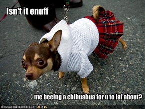 me beeing a chihuahua for u to laf about?