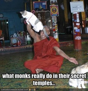 what monks really do in their secret temples...