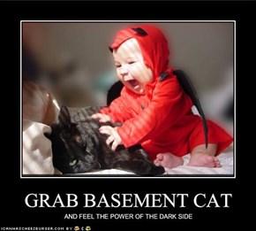GRAB BASEMENT CAT