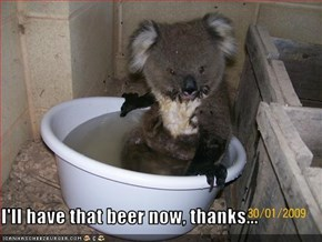 I'll have that beer now, thanks...