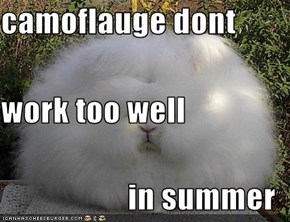 camoflauge dont  work too well in summer