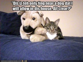 """""""Dis iz teh only fing near a dog dat I will allow in dis house. All clear?"""""""