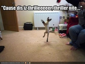 """Cause dis iz thrilleeeeer, thriller nite...."""