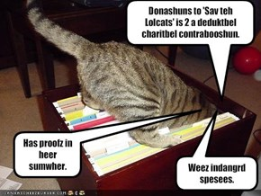 Donashuns to 'Sav teh Lolcats' is 2 a deduktbel charitbel contrabooshun.