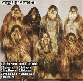 Kashyyyk High School - 1978