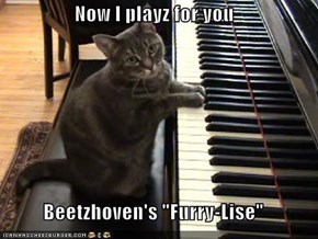 "Now I playz for you  Beetzhoven's ""Furry-Lise"""