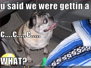 u said we were gettin a  c....c.....c..... WHAT?