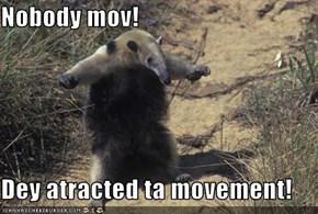 Nobody mov!  Dey atracted ta movement!