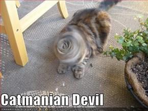 Catmanian Devil