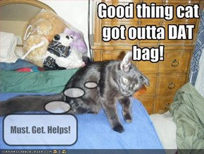 Good thing cat got outta DAT bag!