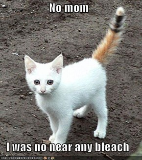 No mom  I was no near any bleach