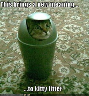 This brings a new meaning...  ...to kitty litter