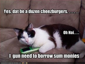 Yes, dat be a duzen cheezburgers. . . . . . .