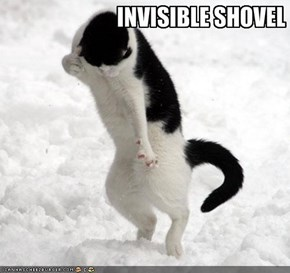 INVISIBLE SHOVEL