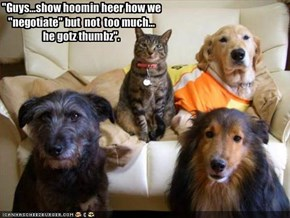 """Guys...show hoomin heer how we ""negotiate"" but  not  too much...
