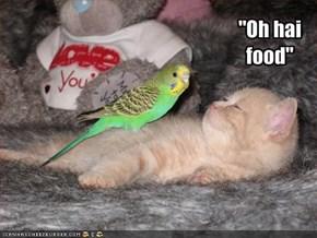 """""""Oh hai food"""""""