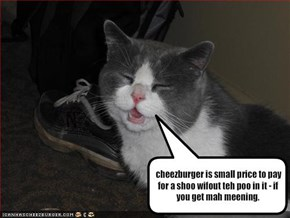 cheezburger is small price to pay for a shoo wifout teh poo in it - if you get mah meening.