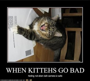 WHEN KITTEHS GO BAD