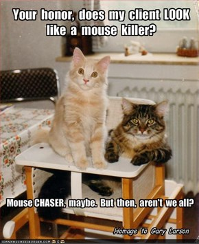 Your  honor,  does  my  client  LOOK  like  a  mouse  killer?
